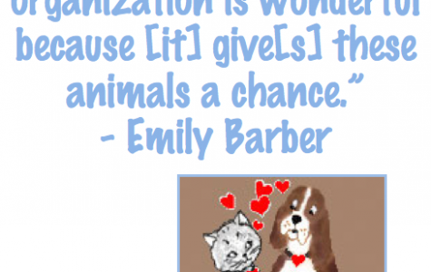 CHS students help nurture neglected pets