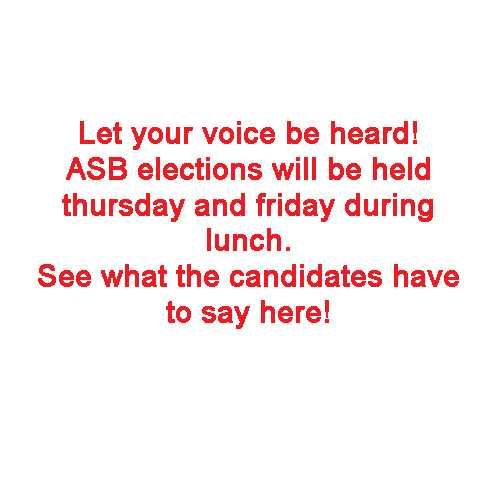 ASB elections