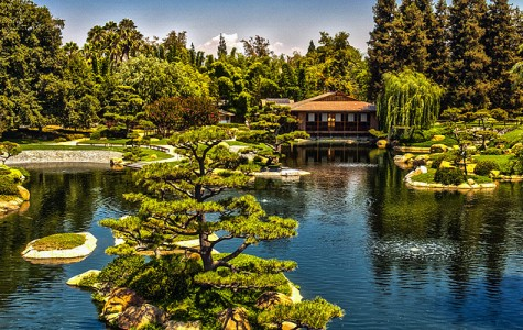 Indulge in the authentic and enchanting Japanese Garden