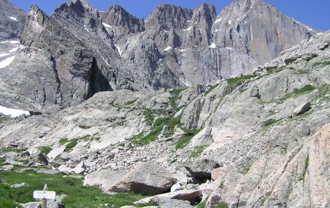 Researchers discover fossils in the Canadian Rocky Mountains that reveal previously unknown organisms