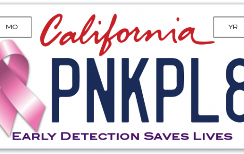 Breast cancer license plates help raise money for cancer research and awareness