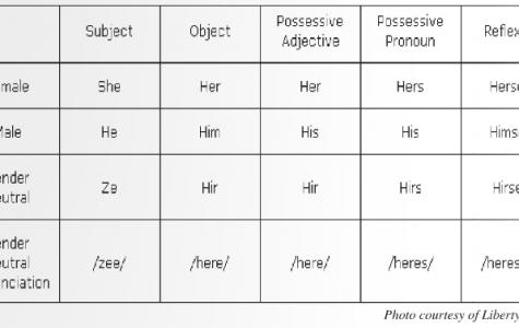 Proper gender pronoun usage