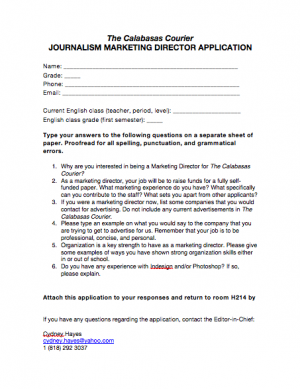 Marketing Director application