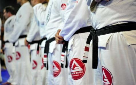 Brazilian jiu-jitsu studio in Agoura Hills offers high impact classes