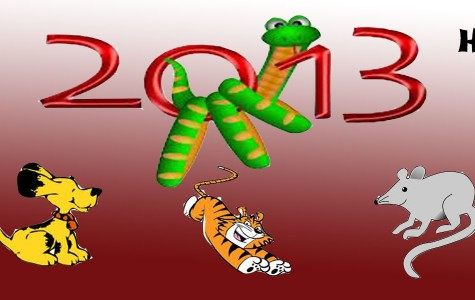 Year of the Snake: 2013 Horoscope