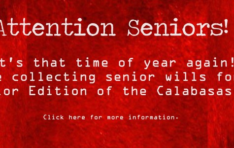 Attention Seniors! Time for Senior Wills!