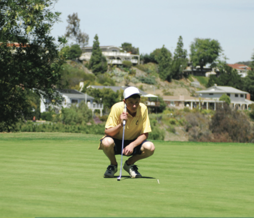 Boys golf has successful record for the season