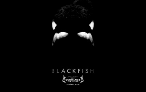 The documentary Blackfish exposes the evil nature of whale captivity