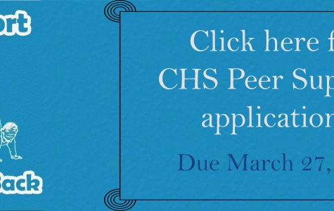 CHS Peer Support 2014-2015 Application