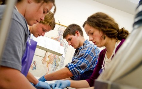 School dissections expose students to unethical treatment of animals as well as potential health risks