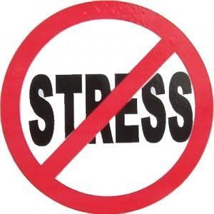 Close that textbook and de-stress before finals