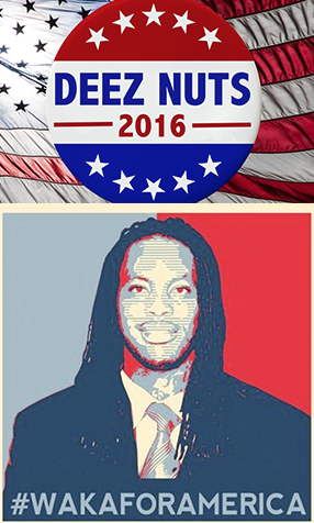 Independent candidates for the 2016 presidential election