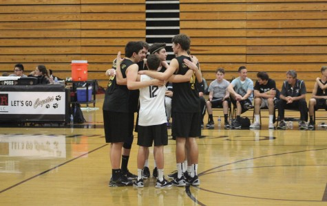 Boys' Volleyball starts season strong