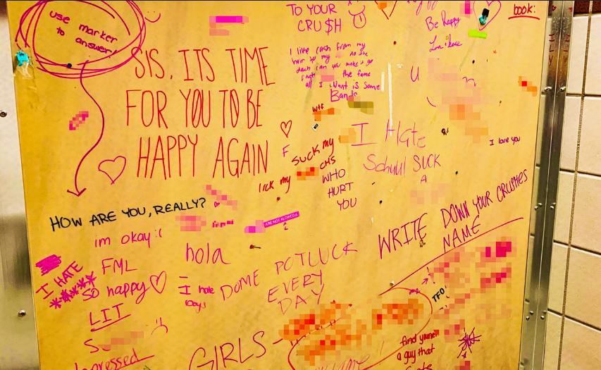 Bathroom Vandalism